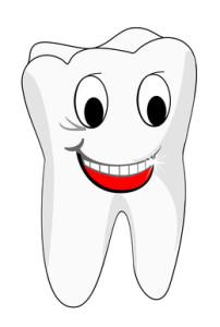 A fogszuvasodás megelőzésében segít a sajtfogyasztás.