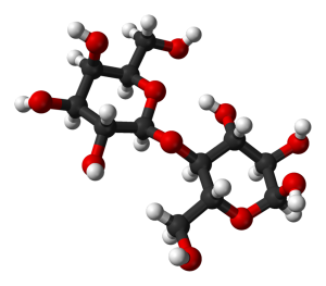 laktóz = galaktóz + glükóz