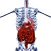 Crohn betegség és a laktóz-intolerancia