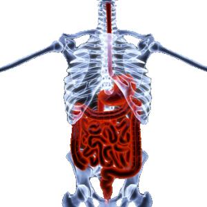 Hogy függ össze a Crohn betegség és a másodlagos laktóz-intolerancia
