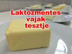 laktózmentes vajak tesztje