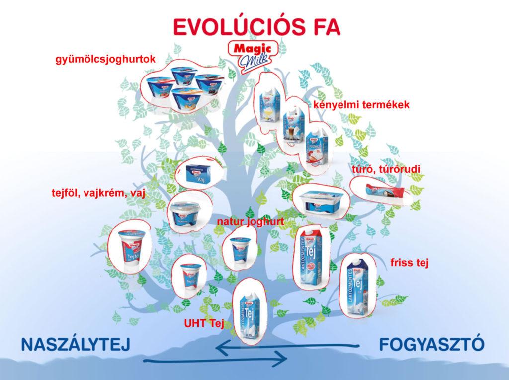 Naszálytej laktózmentes tejtermékek evolúciós fája